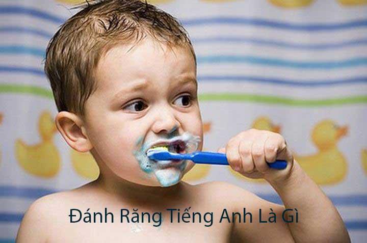Từ Vựng Tiếng Anh: Đánh răng tiếng anh là gì?